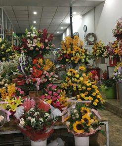 Hoa tươi, hoa lan