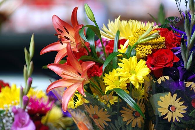 bi quyet giu hoa tuoi lau ngay tet 4