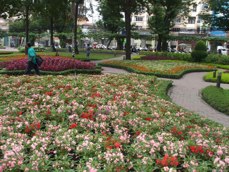 cay hoa trong vuon hoa cong vien