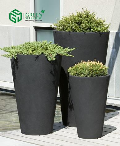 Cây thấp nên dùng chậu trồng cây cao