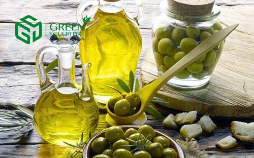 Thành phần của dầu Ô liu có chứa nhiều chất chống oxy hóa tốt cho sức khỏe của người sử dụng